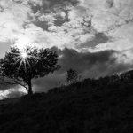 Photo de paysage d'automne 7