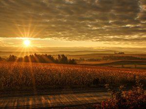 Photo de paysage d'automne 6