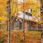 Photo de paysage d'automne 5