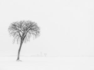 Photo de paysage d'hiver 8