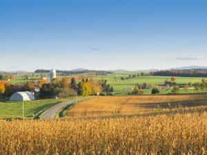 Photo de paysage d'automne 3