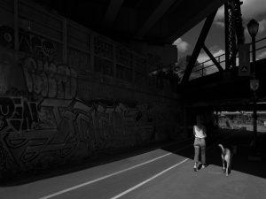Photo de rue 6