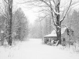 Photo de paysage d'hiver 4