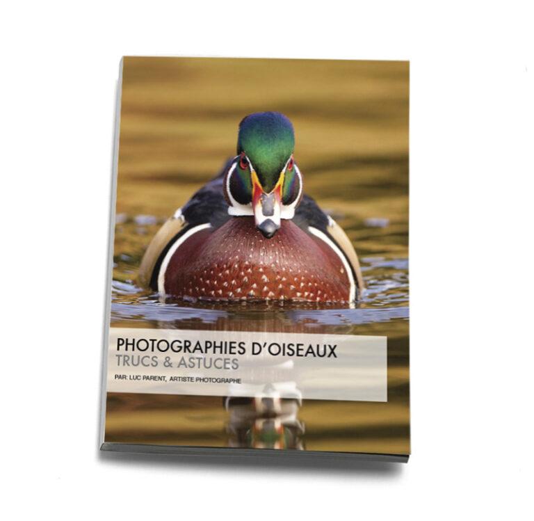 Photo guide oiseaux
